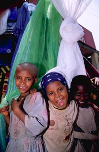 NetMark public-private partnerships insecticide-treated nets itns bednets Ethiopia